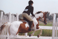 Sharon on Calico, jumping at a show.